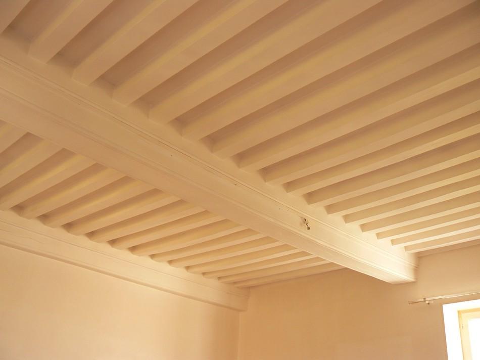 Plafond A La Francaise Idees D Images A La Maison